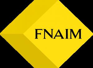 logo-FNAIM COULEUR-SANS FOND BLANC